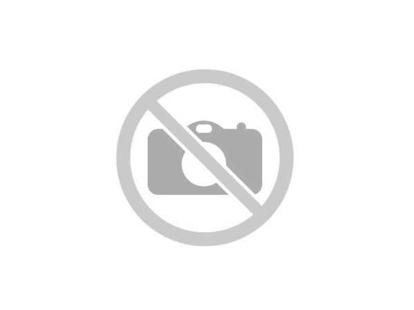 Vranilovka (Origanum vulgare L.)