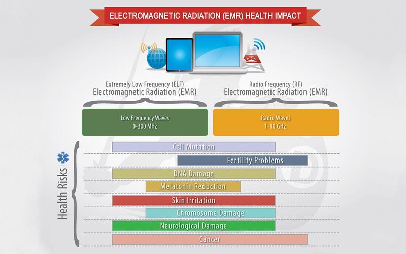 Detection-harmful-radiation-Detekcija-štetnih-zračenja-mother-tincture-urtinktur-teinture-mere-homeopat-ekstrakt-tinktura-biljni-preparati-com-Alternativa-Metode-rehabilitacije
