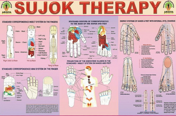 Su-Jok-therapy-Sujok-Su-dzok-mother-tincture-urtinktur-teinture-mere-homeopat-ekstrakt-tinktura-biljni-preparati-com-Alternativa-Metode-dijagnostike-lecenja