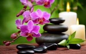 chinese-feng-shui-chinesischen-feng-shui-chinois-kineski-feng-sui-mother-tincture-urtinktur-teinture-mere-homeopat-ekstrakt-tinktura-biljni-preparati-com-alternativa-prakse