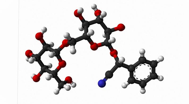 amigdalin